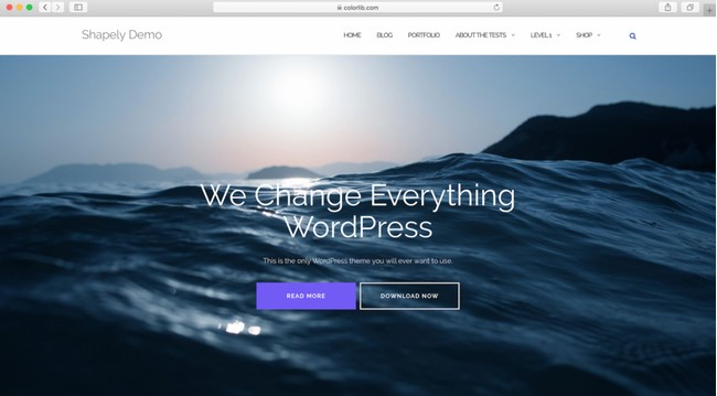 WordPress theme free shapely
