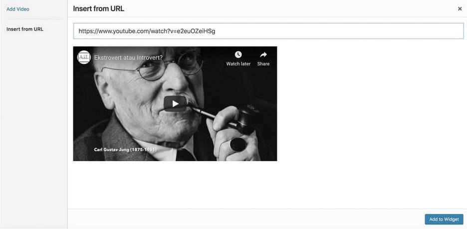 chèn video vào trong widget wordpress