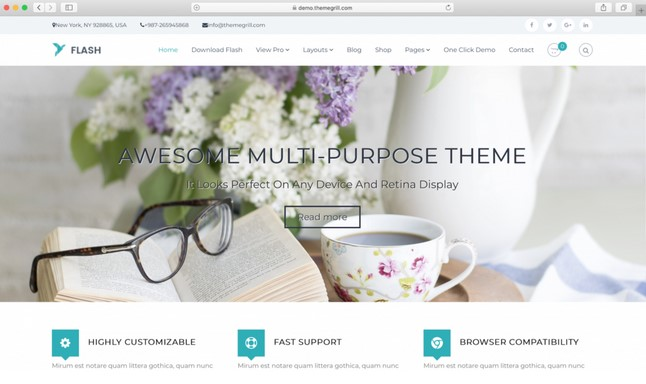 flash theme WordPress free
