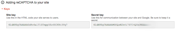 google recaptcha site keys và secret keys