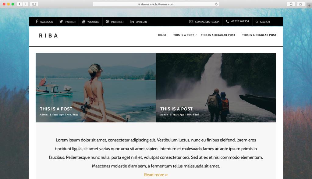theme WordPress Riba Lite