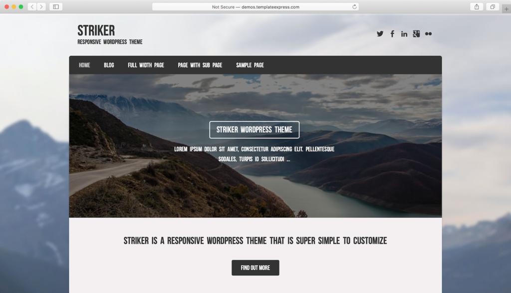 Striker WordPress theme miễn phí