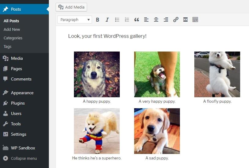 ví dụ wordpress gallery đầu tiên
