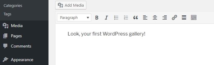 WordPress gallery đầu tiên